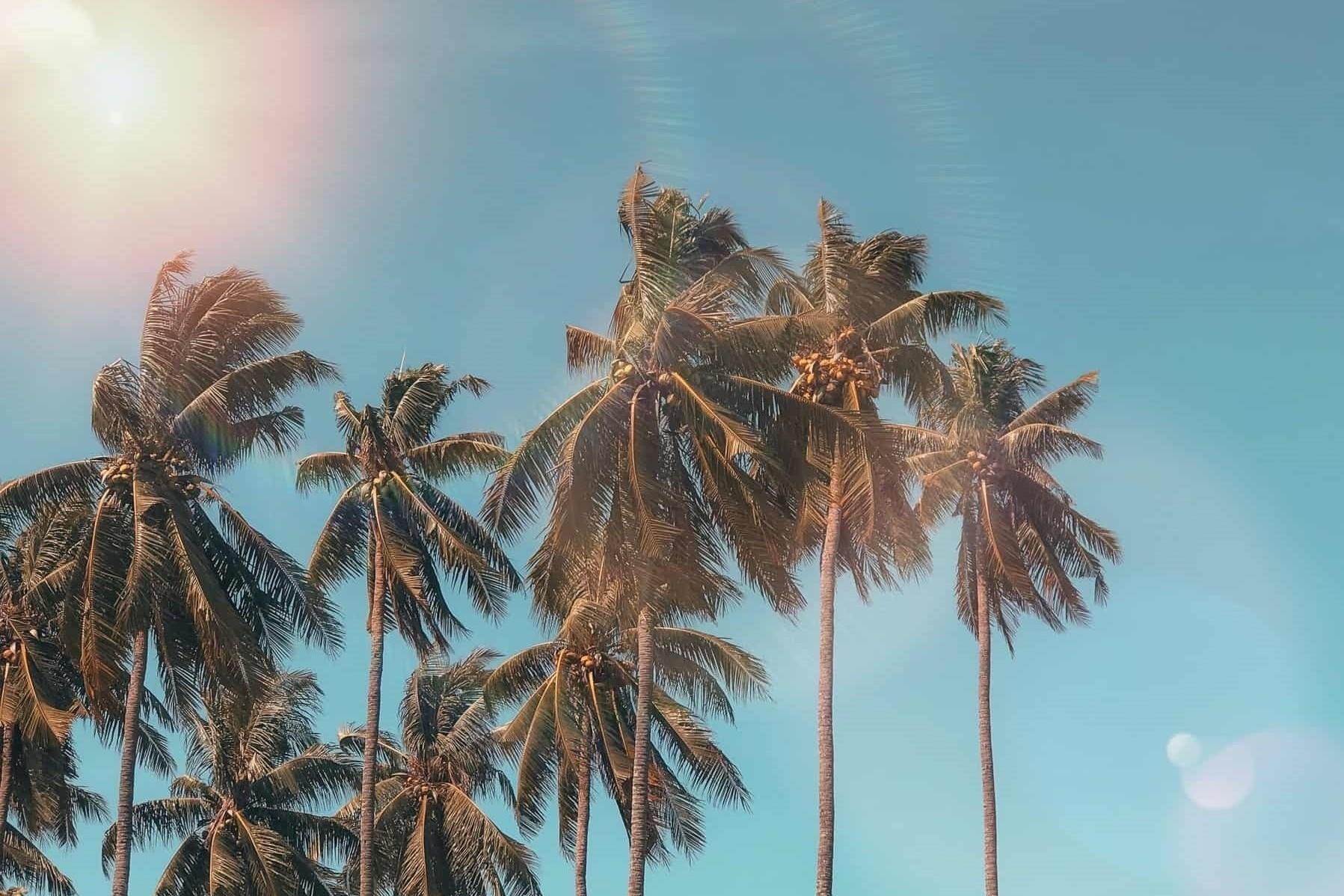 Bali kiedy najlepiej pojechać